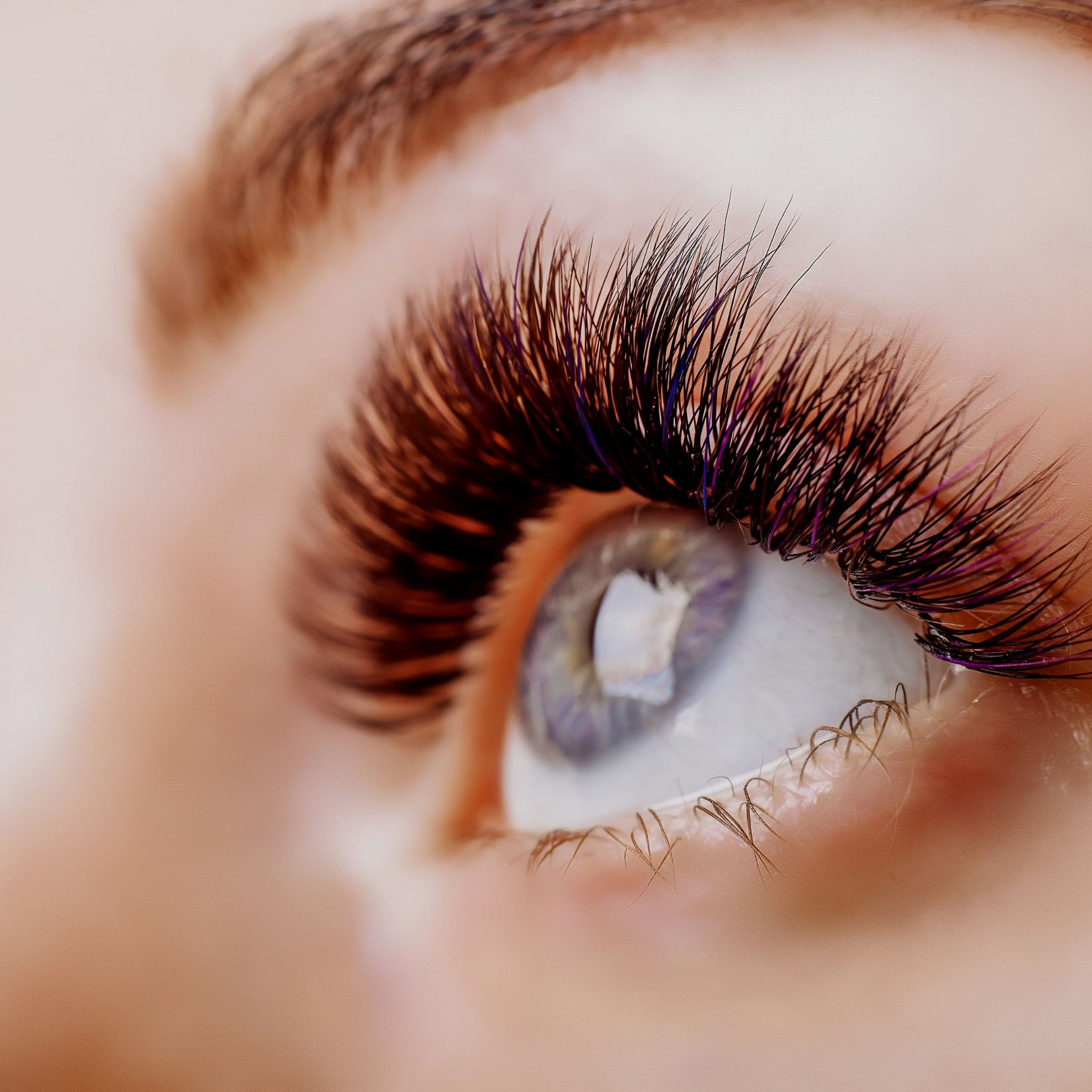 Everything You Need To Know About Your Eyelashes