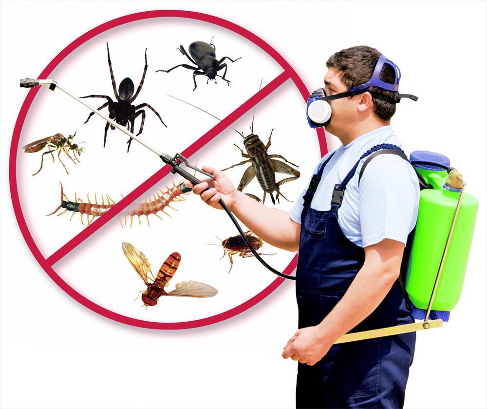 The Cost Of Pest Control