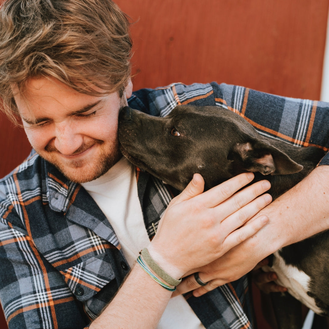Why Dogs Will Always be Man's Best Friend