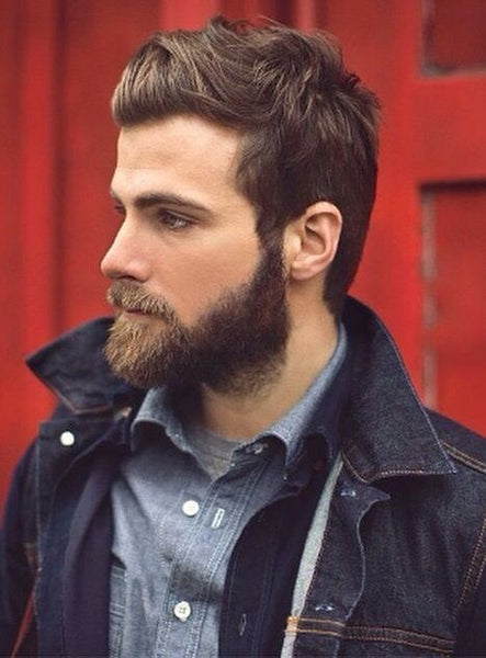 Admirable 16 Beard Styles You Can Try In 2017 Beard Styles 2017 Lifestyle Short Hairstyles For Black Women Fulllsitofus