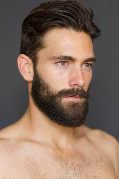 Fantastic 16 Beard Styles You Can Try In 2017 Beard Styles 2017 Lifestyle Short Hairstyles For Black Women Fulllsitofus
