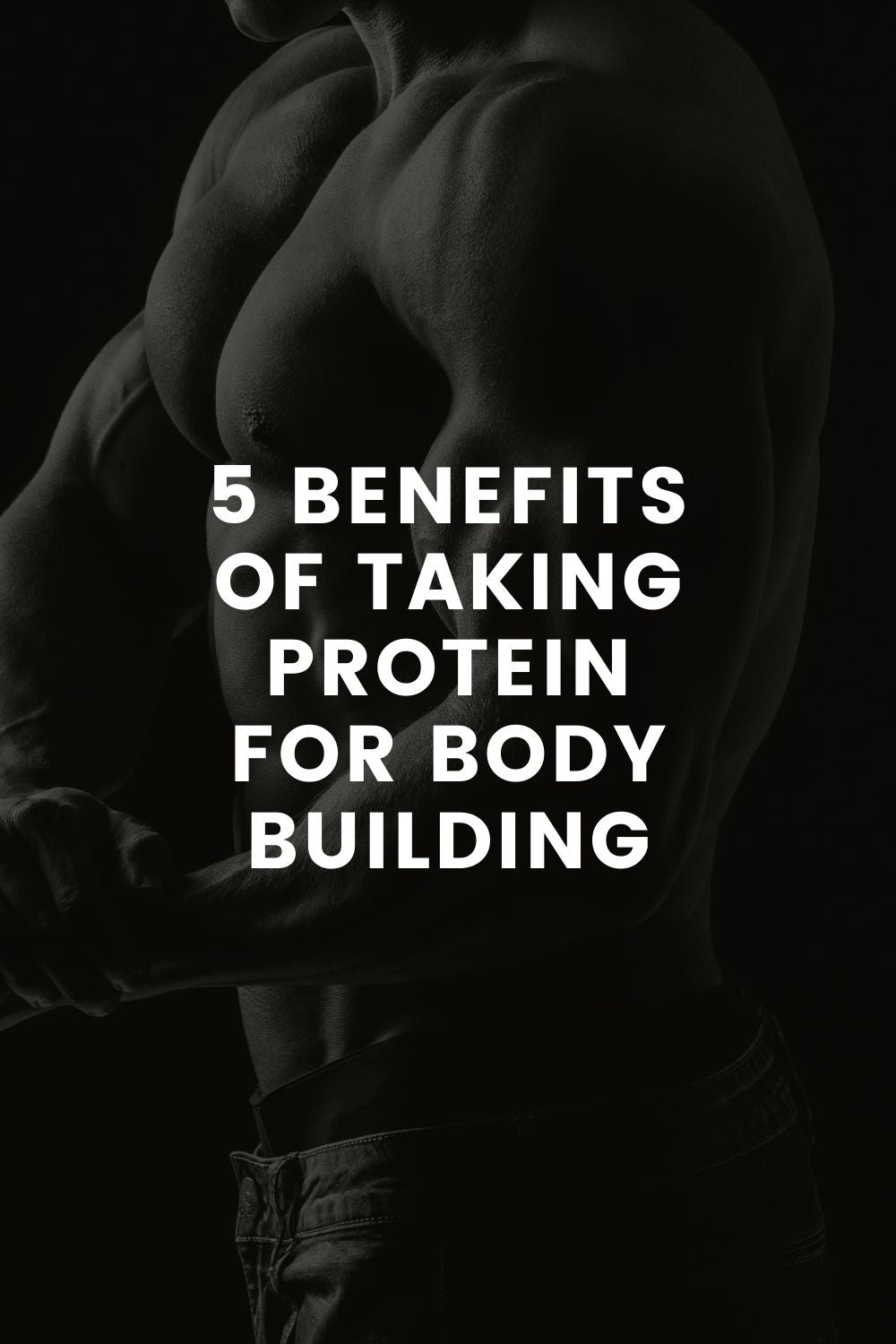 5 Benefits of Taking Protein for Body Building