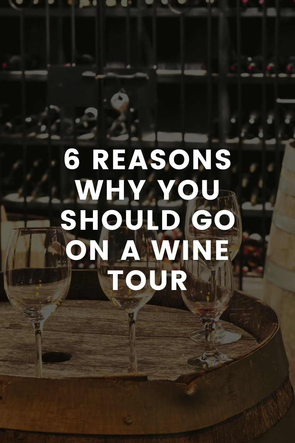 6 Reasons Why You Should Go on a Wine Tour