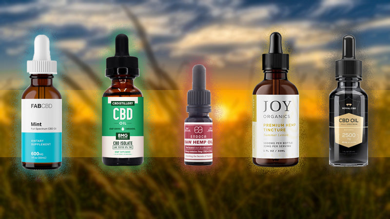 Where Can You Find the Best CBD Oil for Epilepsy