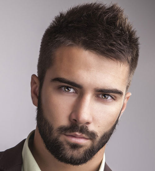 Hairstyles For Men With Beards Professional Beard