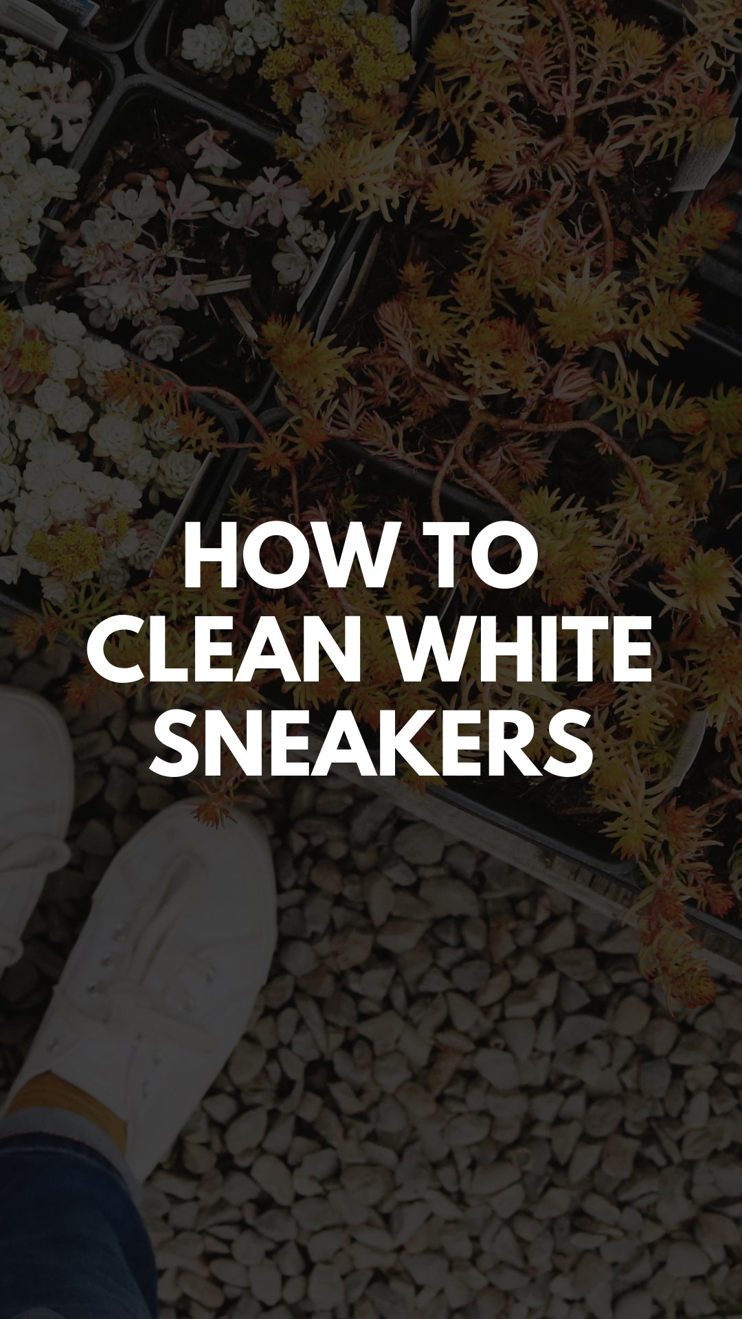 How To Clean White Sneakers At Home