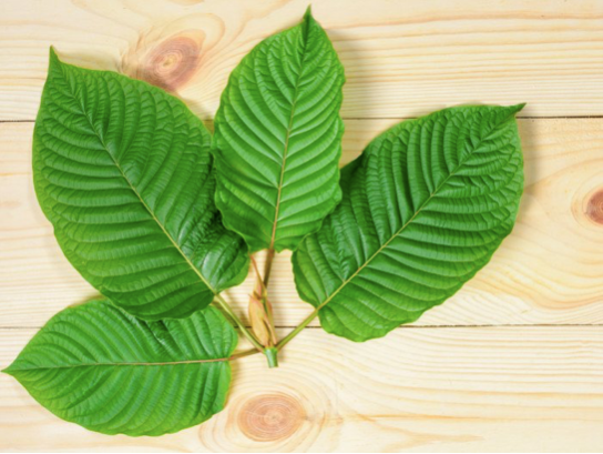 Health Benefits Of Using Kratom: A Complete Guide