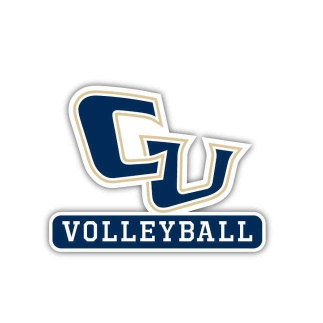 Cornerstone VOLLEYBALL decal - M12