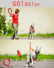 Load image into Gallery viewer, Dog Training Flying Discs