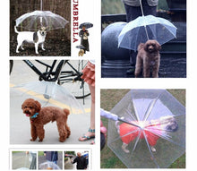 Load image into Gallery viewer, Transparent Dog Umbrella leash