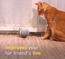 Load image into Gallery viewer, Pet Electric Motion Activated Ball