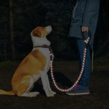 Load image into Gallery viewer, Reflective Large Dog Leash