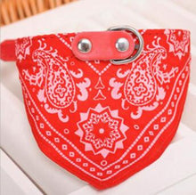 Load image into Gallery viewer, Nylon Puppy Triangular Bandana