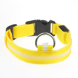 Flashing Fluorescent Leash