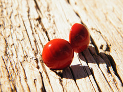 Luscious Red Earrings Studs Silver Plated