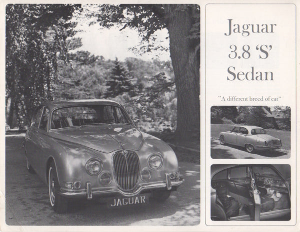 "jaguar_3.8_""s""_sedan_brochure_1965_(single_sheet)-1_at_albaco.com"