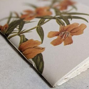 Travel Sketchbooks - Vintage Botanicals Edition