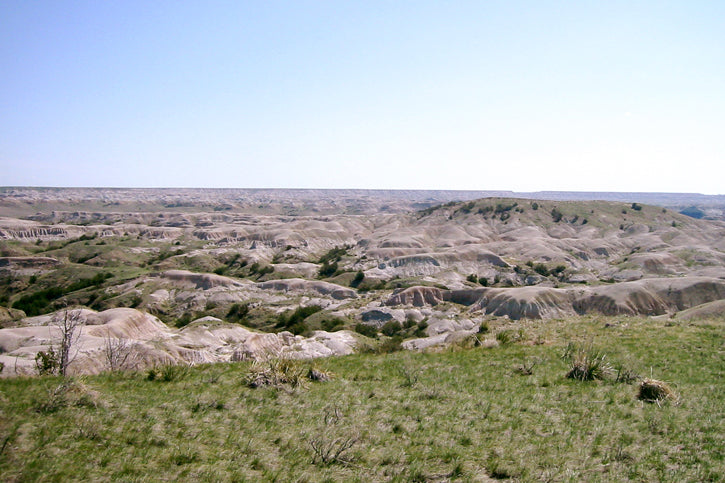 Buffalo Gap National Grasslands
