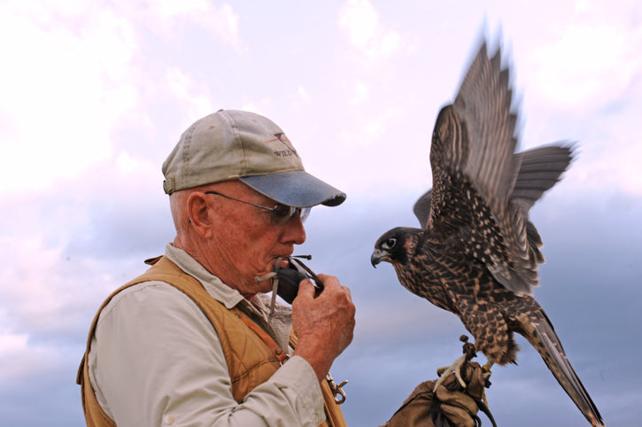 Dan O'Brien Falconer