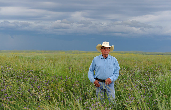 dan standing against a dark gray sky in a green restored prairie