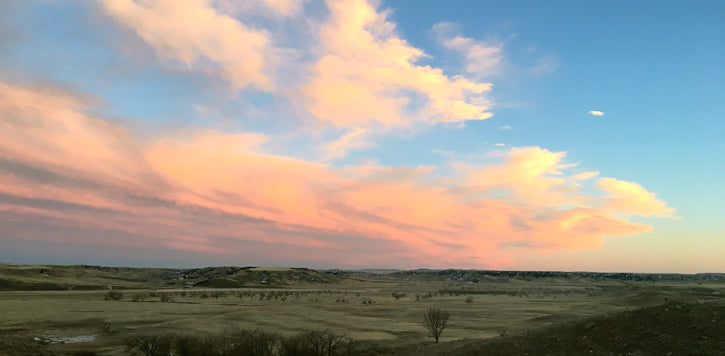 Pink Clouds over Prairie