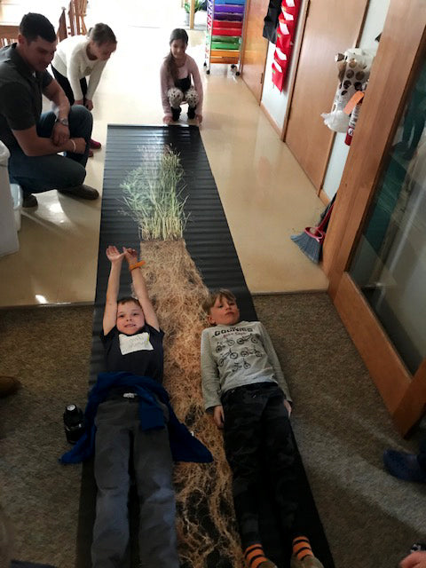 two elementary students lying next to a 14 foot poster of a bluestam rooted plant