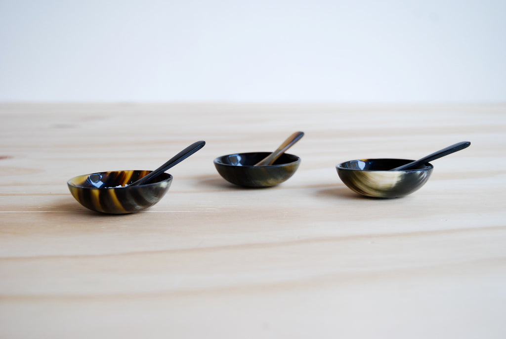 Horn Salt dish and Spoon