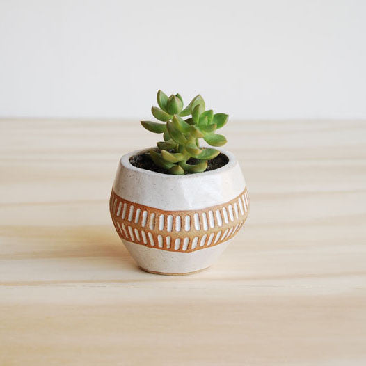 Sharon Elphick Ceramic Pot