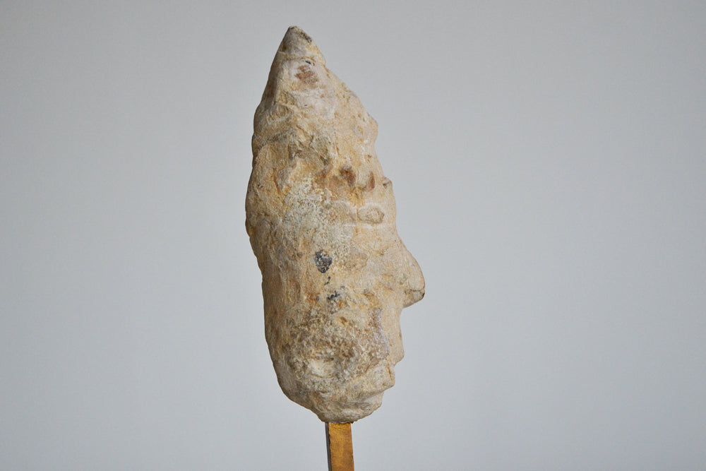 TUCE Fossil Sculpture 1991