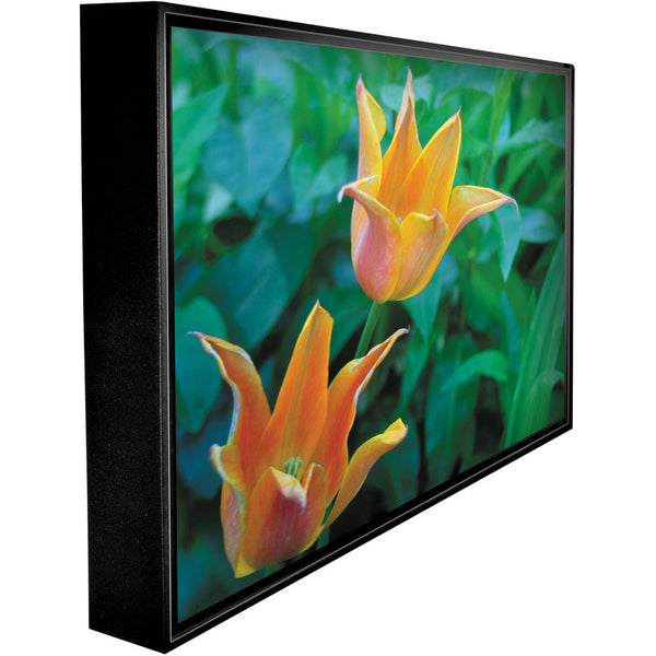 "Peerless CL-55PLC68-OB 55"" Xtreme Daylight Readable Outdoor TV - optically enhanced"
