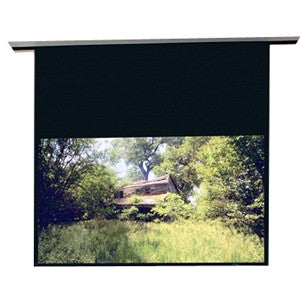 "Draper Access 104305L Electric Projection Screen - 123"" - 16:10 - Ceiling Mount"