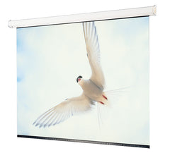 "Draper Targa 116486 Electric Projection Screen - 222"" - 16:10 - Ceiling Mount"
