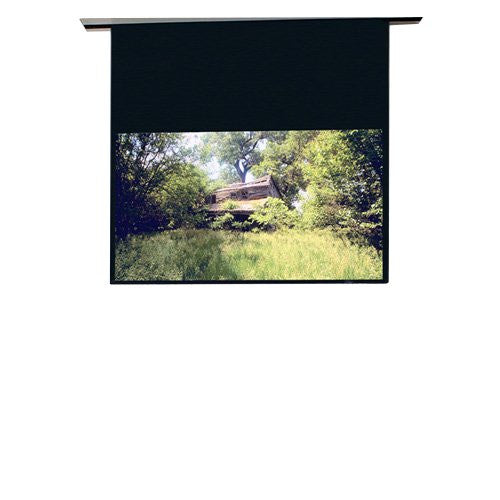 "Draper Access Electric Projection Screen - 120"" - 4:3 - Ceiling Mount"