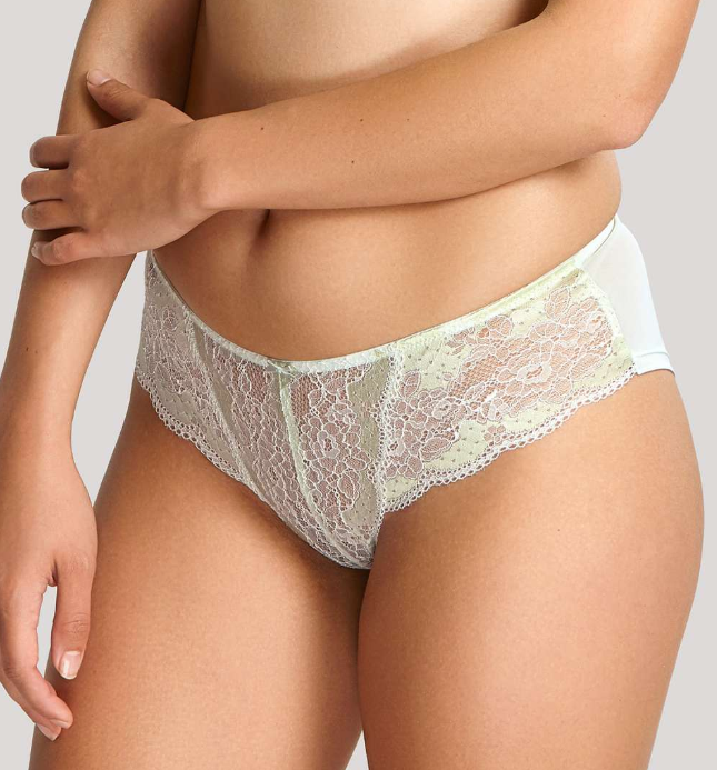 7253 Clara Brief |SOFT SAGE|