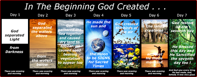 Young Earth Creationist (YEC) - Ultimate Guide to Christian Apologetics