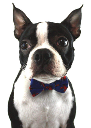 Ella Bing Dog Bow Ties The Mugsy Dog Bow Tie