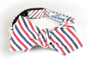 Ella Bing Signature Cloth Bow Ties The Vance Orson Seersucker Bow Tie