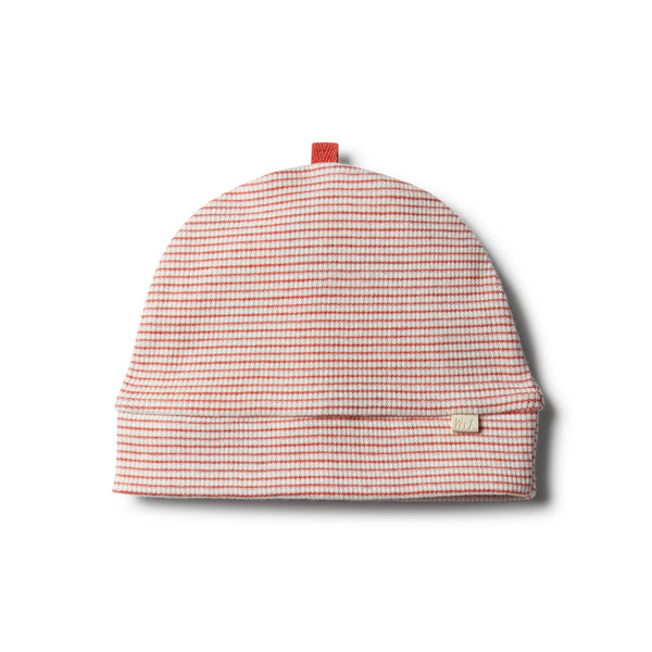 Organic Chilli Beanie - Wilson and Frenchy