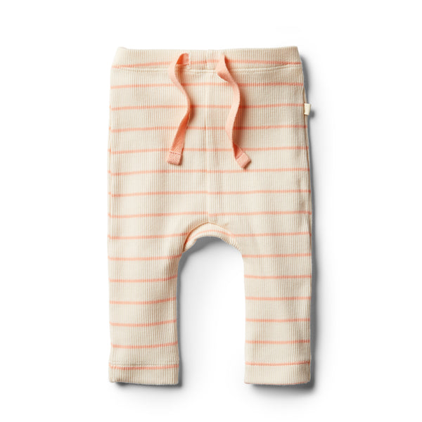 Organic Peach Pearl Stripe Legging - Wilson and Frenchy