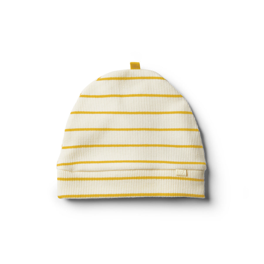 Organic Jojoba Stripe Beanie - Wilson and Frenchy