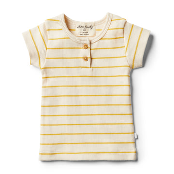 Organic Jojoba  Stripe Tee - Wilson and Frenchy