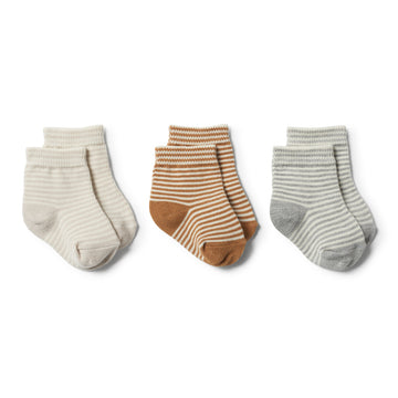 CARAMEL, GREY, EGGSHELL - 3 PACK BABY SOCKS - Wilson and Frenchy
