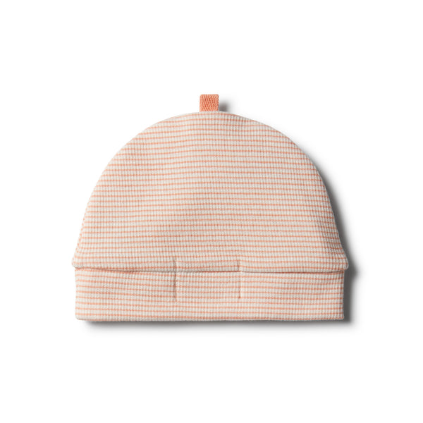 Organic Desert Flower Beanie - Wilson and Frenchy