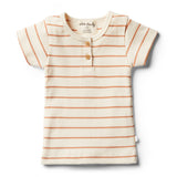 Organic Toasted Nut Stripe Tee - Wilson and Frenchy