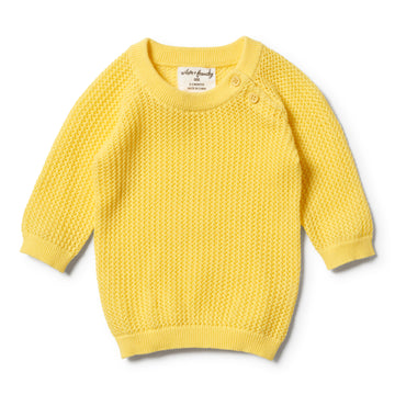 BUTTERCUP MESH SUMMER KNIT RAGLAN-JUMPER-Wilson and Frenchy