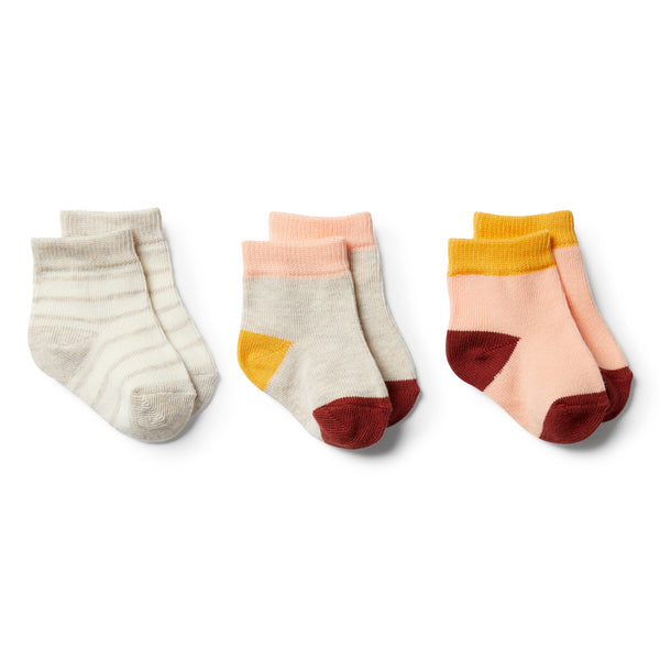 Peachy, Chilli, Golden Apricot-3 Pack Baby Socks - Wilson and Frenchy