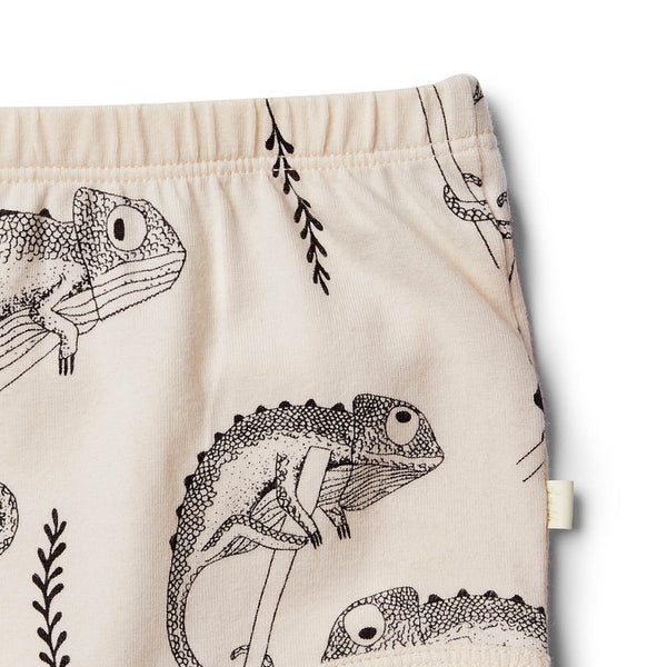 Organic Little Chameleon Nappy Pant