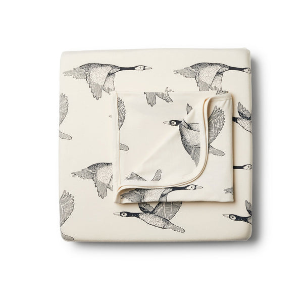 Organic Lets Fly Away Cot Set