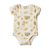 Organic Little Shell Bodysuit