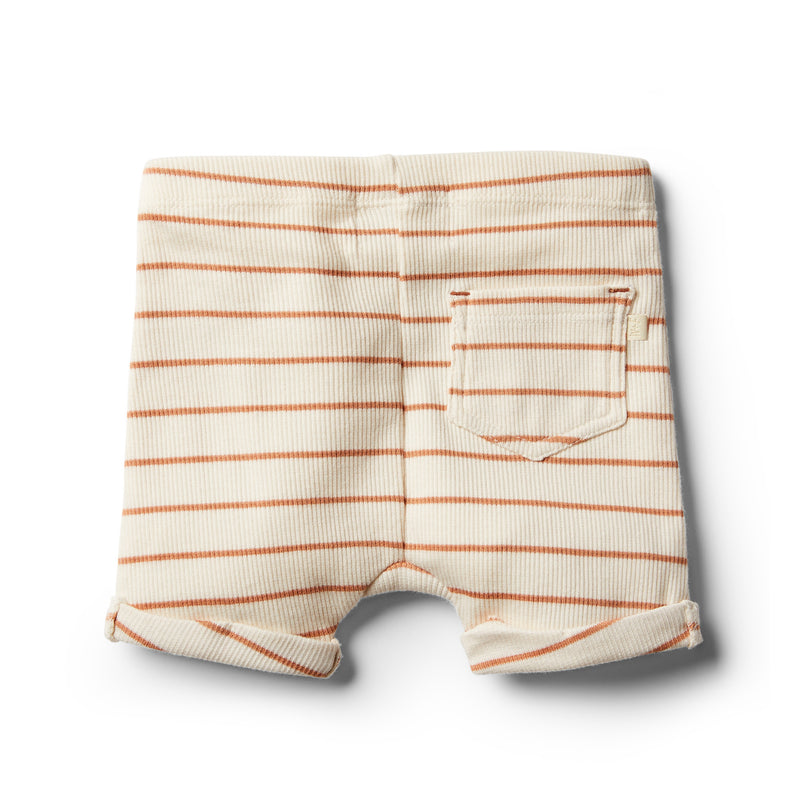 Organic Toasted Nut Stripe Short - Wilson and Frenchy